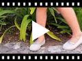 Video from Ballerine da bambina con brillantini